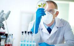 Avviso pubblico per laureati in biologia Avviso pubblico per il conferimento di una borsa di studio per laureato in biologia sperimentale ed biologi lavoro professionisanitarie