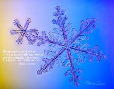 posters, peace, prayer, quote, quotations, photograph, Kodiak, Alaska, Marion Owen, snowflake, real snowflake, snow crystal, Marcus Aurelius