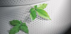 Saltele latex organic Latex, Plant Leaves, Organic, Plants, Plant, Planets