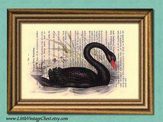 THE BLACK SWAN Dictionary Art Print  Digital by littlevintagechest, $7.99