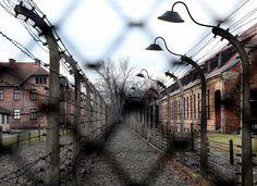 """Sobre el """"Holocausto Cubano"""" – Cuba Encuentro – The Bosch's Blog"""