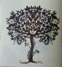 Décimo sétimo colorido. Árvore com pássaros do Jardim Secreto. #arvore #passaros #jardimsecreto