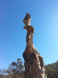 Go... Eagle Onsite Tree Carving - Chainsaw Art - Nature Of Things Chainsaw Art