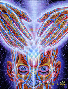 Lightweaver - Alex Grey