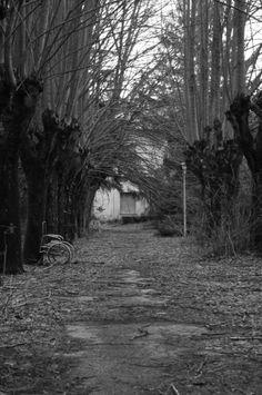 Manicomio Volterra  Febbraio 2014