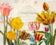 Tulip Fever III Artist: Studio Voltaire