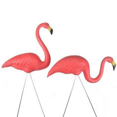 2 Pink Flamingos Classic Retro Signed Garden Statue Decoration Pair Made in USA by Cado, http://www.amazon.com/dp/B0018U0FP6/ref=cm_sw_r_pi_dp_YpsZpb0QRZHYZ