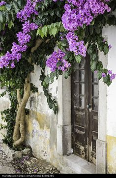 Bougainvillea Draped Doorway in Obidos, Portugal - stock photo