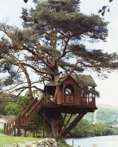 I'm going to live in this tree house someday! :P Tree House Lodge, Loch Goil, Scotland Future House, My House, Story House, Beautiful Homes, Beautiful Places, Beautiful Dream, Cool Tree Houses, Tree House Designs, Tree Tops