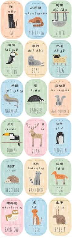 Learn Mandarin everyday - Chinese Vocabulary about Animals For more info please contact: info@mandarinhouse.com The best Mandarin School in China