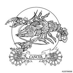 Cancer zodiac sign coloring pages for adults | Fotolia 135706508