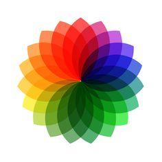 Beautiful Color Wheel