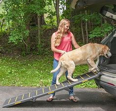 Orvis Reflective Pet Ramp -- More info could be found at the image url. (This is an affiliate link) #DogLovers
