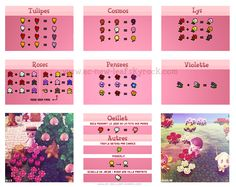 animal crossing flower guide - Google Search