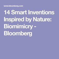 14 Smart Inventions Inspired by Nature: Biomimicry - Bloomberg