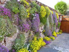Pierre, Garden, Diy Water Feature, Jardin, Plants, Water