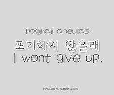 I won't give up!!!!  It looks cool in Korean