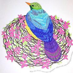 #bird #birds #nature #pretty #milliemarotta #tropicalwonderlandcolouringbook…