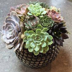 This succulent arrangement is perfect for our modern customers! I make each one to order. I use a unique array of cut succulents and use wire
