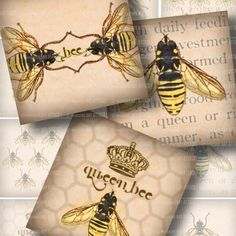 Bee Illustrations . Digital Collage Sheet 185 . Vintage Beekeeping Text . 2.5 inch squares on Etsy