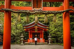 Hakone-Shrine-Looking_through_torii.jpg (795×530)