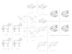 The Helpful Garden: Montessori Zoology - Classes of Vertebrates Nomenclature Set Little Booklets