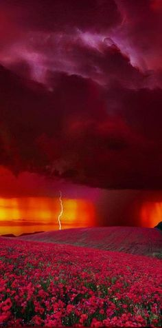 Breathtaking Stormy Sunset #BeautifulNature #Sunsets #Lightning