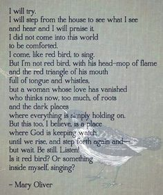 Pretty Words, Beautiful Words, Cool Words, Wise Words, Mary Oliver Quotes, Behind Blue Eyes, Roman, Poem Quotes, Love Poems