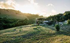 Органическая архитектура: жизнь в согласии с природой