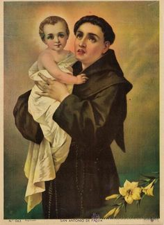 St. Anthony is know as the hammer of heretics. He is  one of the Doctors of the Church — or saints who made particularly important contributions to church teaching. St. Anthony pray for us! #stanthony