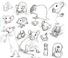 Rat Practice 10 by nEVEr-mor.deviantart.com on @deviantART