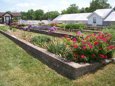 stony brook garden, NY