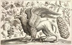 Griffin. Etching by Wenceslas Hollar (1607-1677)