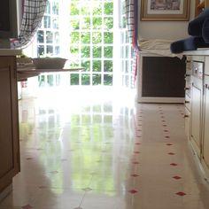 Vinyl floor polishing Surrey Vinyl Floor Cleaners, East Sussex, Vinyl Flooring, Surrey, Hampshire, Home Appliances, Cleaning, Home Decor, House Appliances