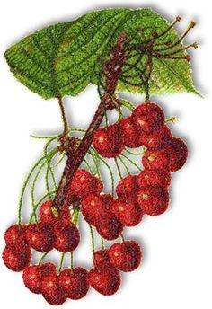 cherry machine embroidery