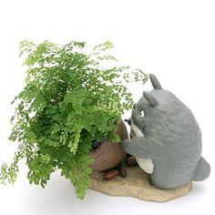 Studio Ghibli My Neighbor Totoro Gardening Planter Potter... https://www.amazon.com/dp/B01K41M020/ref=cm_sw_r_pi_dp_x_5rXmybGKEGDD3