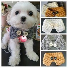 Crocheted Puppy / dog scarf Choose from 7 colors by QuiltNCrochet