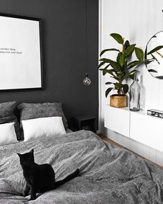 Black and white minimalist bedroom with plant Minimalist Bedroom Bedroom Black interiordesign Minimalist plant White White Bedroom Decor, Bedroom Black, Bedroom Inspo, Home Decor Bedroom, Design Bedroom, Black Bedrooms, Grey Wall Bedroom, Bedroom Ideas Grey, Black White And Grey Bedroom