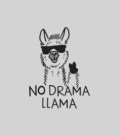 Save the drama for your lama! I love the drama lama Save the drama for your lama! I love the drama lama Alpacas, Funny Tshirts, Graphic Tees, Funny Pictures, Llama Pictures, Llama Images, Funny Quotes, Fat Quotes, Shirt Quotes