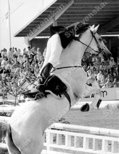 Annette Lewis in her very own style! Here at Falsterbo Horse Show in 1988.