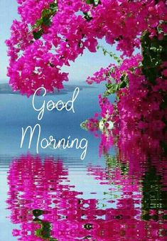 Good Morning Messages Friends, Good Morning Flowers Quotes, Happy Good Morning Quotes, Good Morning Sunday Images, Morning Wishes Quotes, Good Morning Nature, Good Morning Motivation, Good Morning Beautiful Images, Good Morning Cards
