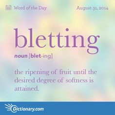Bletting definition, the ripening of fruit, especially of fruit stored until the desired degree of softness is attained. Unusual Words, Rare Words, Unique Words, Powerful Words, Fancy Words, Big Words, Great Words, Foreign Words, Aesthetic Words
