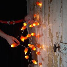 Idee van Gardenista: deze sfeervolle do it yourself herfstslinger, gemaakt van lampionplant. Lees hier hoe je hem maakt.