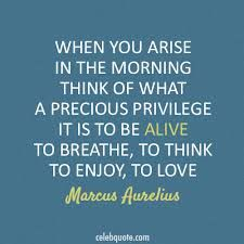 When you arise in the morning think of what a precious privilege it is to be ALIVE to BREATHE, the THINK, to ENJOY, to LOVE. http://fluidisometrics.com
