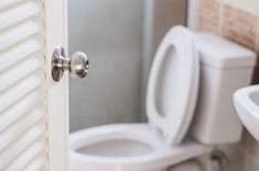 World Toilet Day: स्वच्छता और स्वास्थ्य का रखें ध्यान - Hindi News Bathroom Sink Drain, Bathroom Sink Vanity, Toilet Door, Toilet Paper, Bathroom Door Locks, World Toilet Day, Easy Weight Loss Tips, Home Workshop, What Really Happened