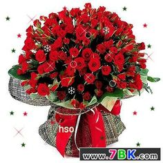 The perfect Flowers Rose Animated GIF for your conversation. Discover and Share the best GIFs on Tenor. Roses Gif, Flowers Gif, Beautiful Bouquet Of Flowers, Beautiful Flower Arrangements, Love Flowers, Beautiful Roses, Happy Birthday Celebration, Happy Birthday Flower, Happy Birthday Images