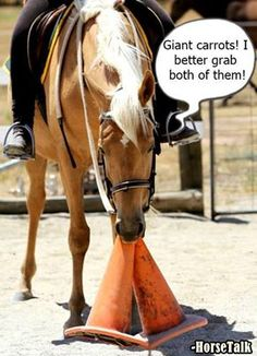 Silly Horse those aren't carrots!! Giant carrots have to get both at same time!! LOL