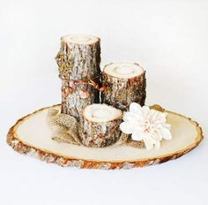 EXTRA Large Rustic Wood Tree Slice Centerpieces, Trivets, Hot plates, Chargers - Personalized - - diameter - SET OF 10 Fall Wedding Flowers, Rustic Wedding Centerpieces, Diy Centerpieces, Diy Wedding Decorations, Wood Slice Centerpiece, Tree Slices, Wood Slices, Fall Wedding Invitations, Rustic Wood