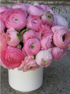 Ranunculus, my favorite flower. In Paris, the hotel entry way had a small vase on the table displaying the endless petals of this beauties. My Flower, Fresh Flowers, Spring Flowers, Pretty In Pink, Beautiful Flowers, Prettiest Flowers, Cactus Flower, Exotic Flowers, Purple Flowers
