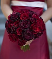 Wedding Bouquet: Red Rose Bouquet